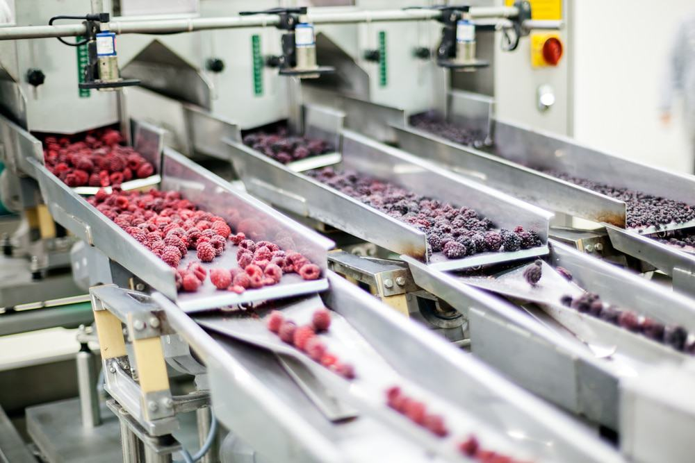Frozen Foods are being processed