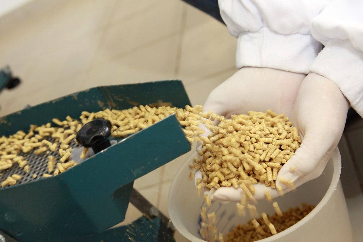 Inside a pet food processing company