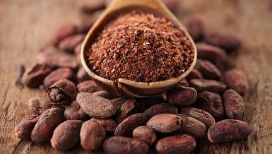 Powder Processing in Regards to Food