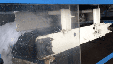 ICE Processing on Thayer Scale S-24T Model Weigh Belt